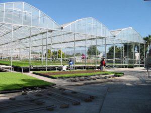 Retail Garden Center Greenhouse