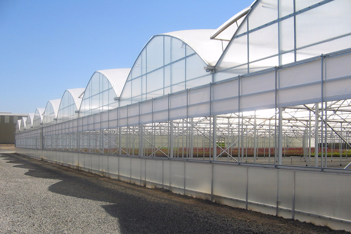 Commercial Floriculture Horticulture CropsQuonset Greenhouse