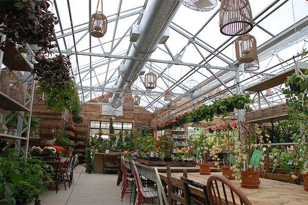 A-frame greenhouse garden center