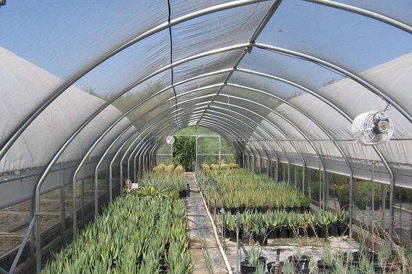 Cold Frame Nursery Greenhouse