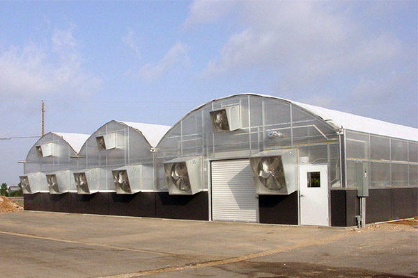 Commercial Quonset Greenhouse gutter connected Diamond Rainbow Arch