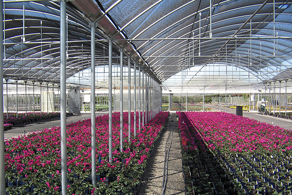 Quonset Greenhouse Covering Commercial