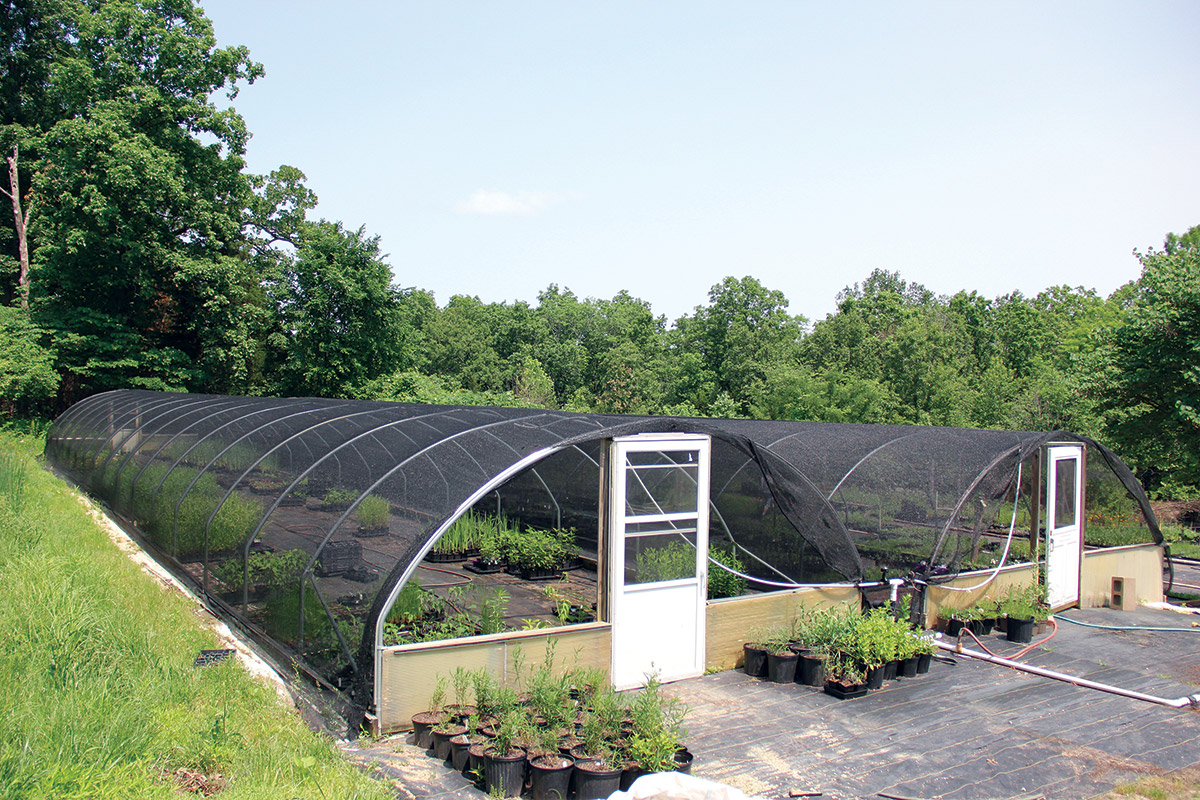 Cold Frame Hoop House Nursery Greenhouse