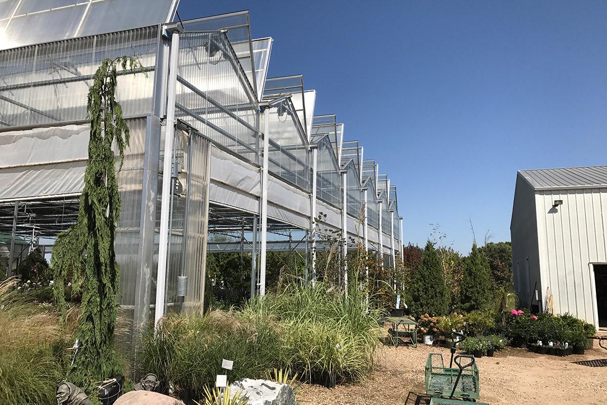 Venlo Style Open Roof Garden Center Greenhouse