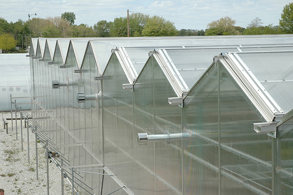 Venlo Style Open Roof Greenhouse Educational Classroom