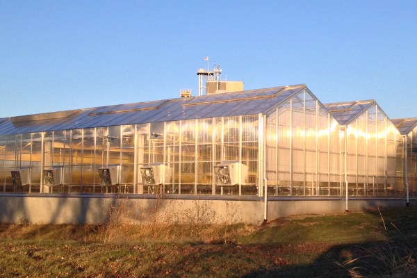 Research Institution Greenhouse A-frame