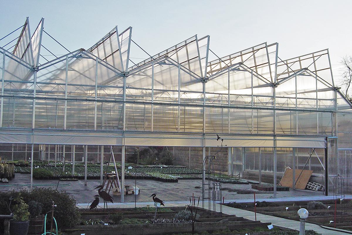 Venlo Style Open Roof Greenhouse Nursery