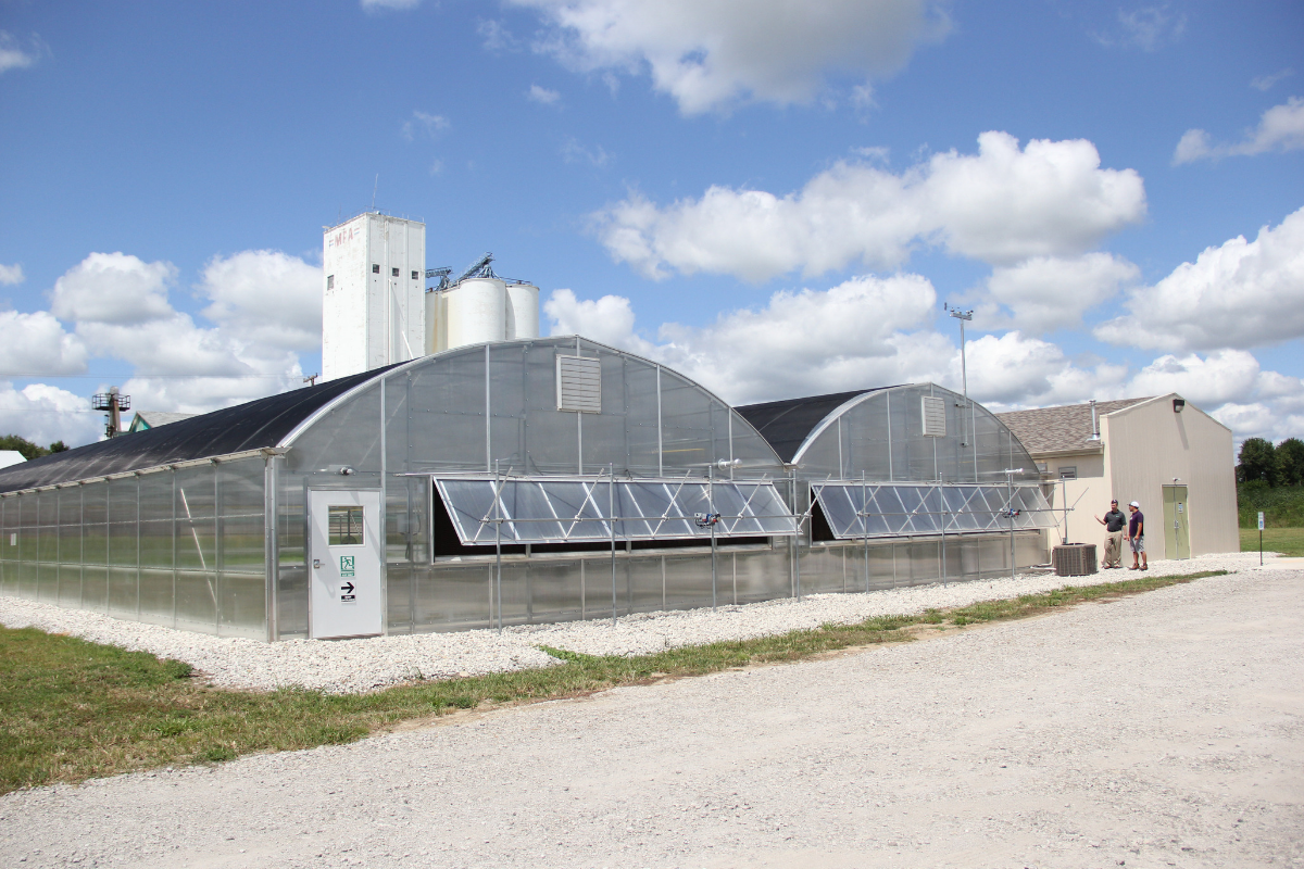 Commercial Quonset Gutter Connected Horticulture Greenhouse