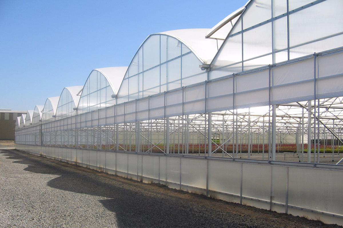 Commercial Quonset Greenhouse Horticulture Floriculture