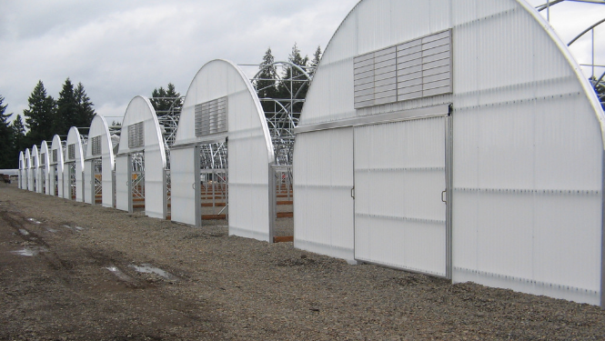 Hoop House Cold Frame Greenhouse