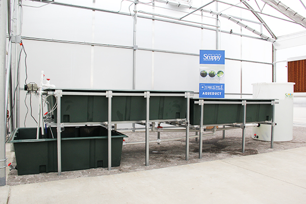 Aquaponic Educational Growing Systems